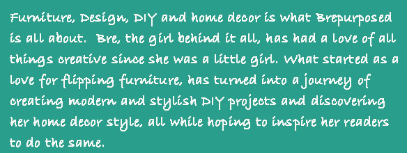 Furniture, Design, DIY and home decor is what Brepurposed is all about. Bre, the girl behind it all has had a love of all things creative since she was a little girl. What started as a love for flipping furniture, has turned into a journey of creating modern and stylish DIY projects and discovering her home decor style, all while hoping to inspire her readers to do the same.  Bre lives in Youngstown OH, with her husband Dan, daughter Eloise and dog Oakley.