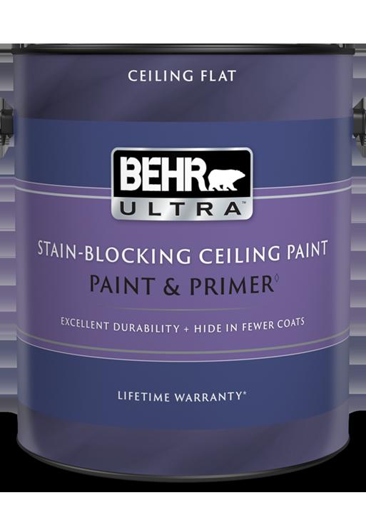 Interior Stain Blocking Ceiling Paint, Primer For Bathroom Ceiling