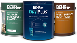 Specialty paint products