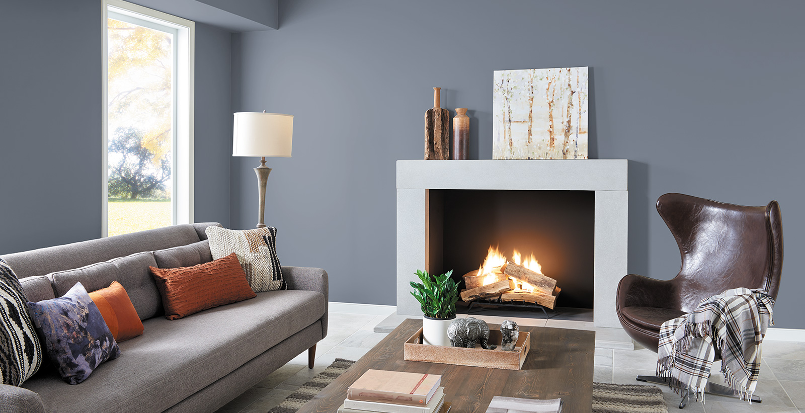 Wall Colour Inspiration: Blue Living Room Gallery