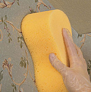Apply mixture to wallpaper.