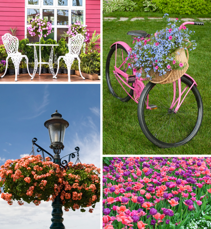 A collage of images with flowers representing pink and purple colors.