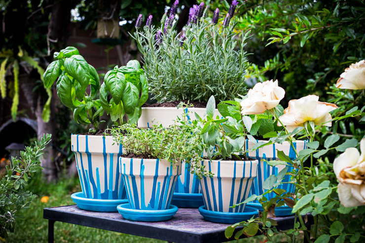 Herb garden with painted pots.