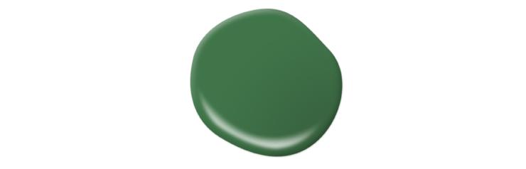 A paint drop representing the color Grasslands.