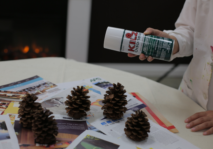 Primer and pinecones.