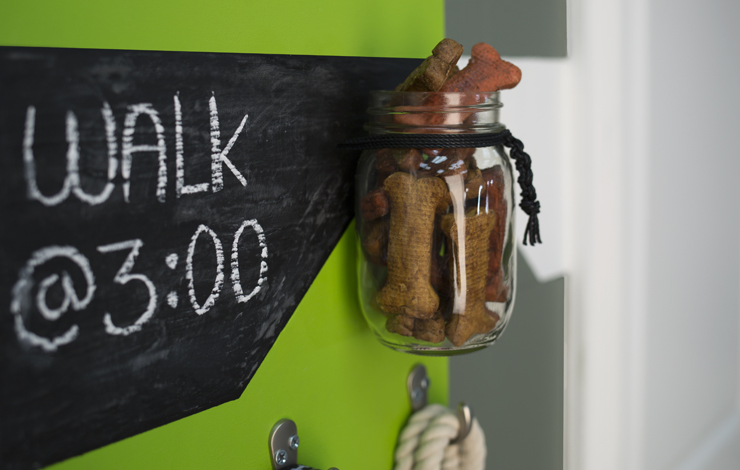 Close up view of the dog leash holder showing the jar filled with treats.
