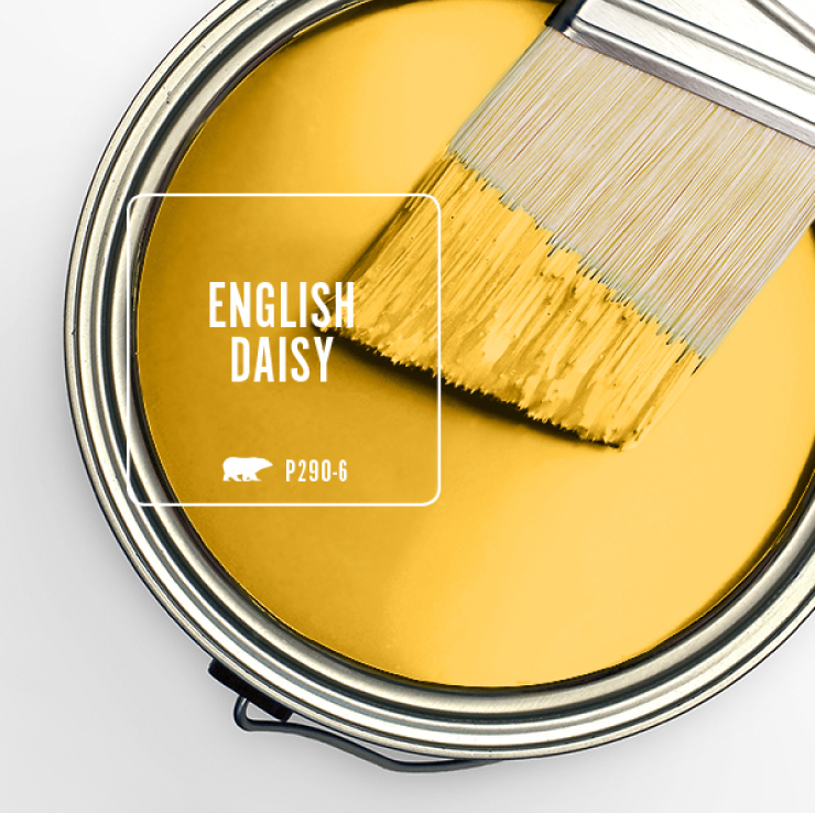 Paint Swatch - Open paint can with paint brush that was dipped showing paint color for: English Daisy.