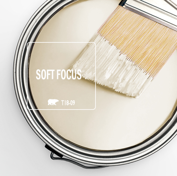 Paint Swatch - Open paint can with paint brush that was dipped showing paint color for Soft Focus (a soft cream color).