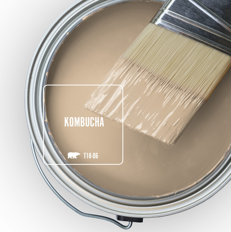 Paint Swatch - Open paint can with paint brush that was dipped showing paint color for Kombucha.