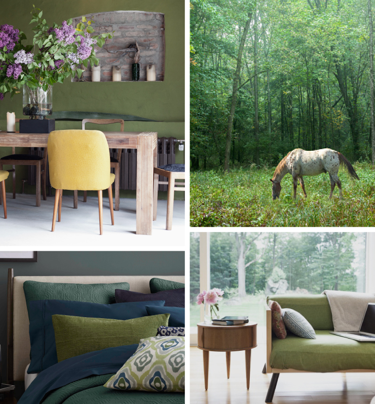 A collage of four images representing the color Secret Meadow. A rustic dining area with walls painted in Secret Meadow. A grassy field with tall green trees in the background, a horse is in the foreground eating grass. A tight crop of a bedroom showing the top half of bed and pillows. A living room with a couch sitting in front of a large window. Outside the window shows green grass and trees.