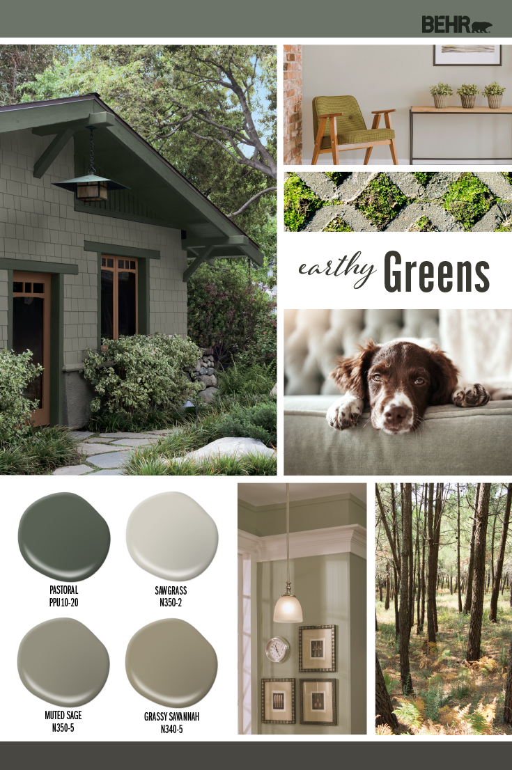 Inspiration Board featuring four green paint drops: Pastoral, Sawgrass, Muted Sage, Grassy Savannah Images shown are the following: -An exterior home painted in Muted Sage with trim in Pastoral. -A sitting area with wall painted in Sawgrass. -A dog lying on a sage colored coach -Corner section of a kitchen with walls painted in Grassy Savannah. -A picture of trees in the woods.