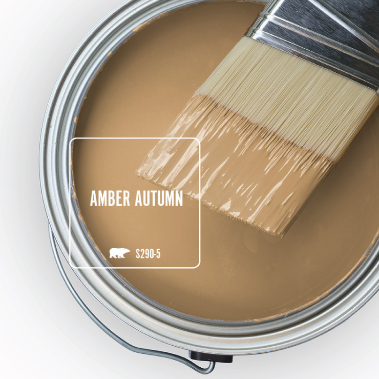 Paint Swatch - Open paint can with paint brush that was dipped showing paint color for Amber Autumn.