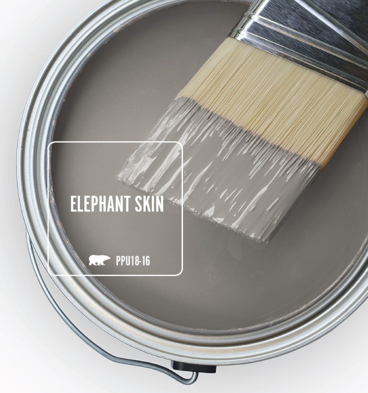 Paint Swatch - Open paint can with paint brush that was dipped showing paint color for Elephant Skin.