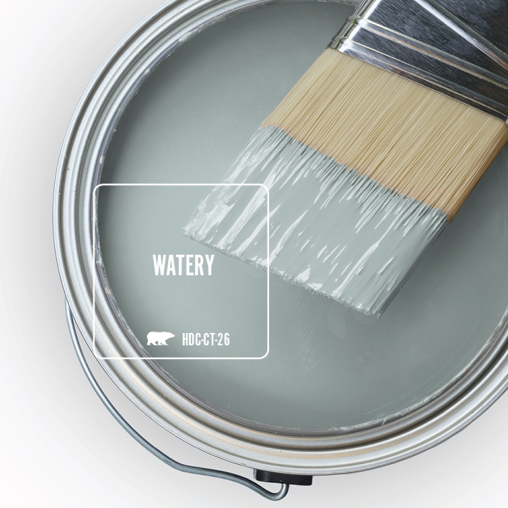 Paint Swatch - Open paint can with paint brush that was dipped showing paint color for Watery.