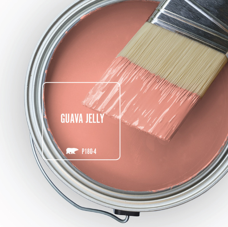 Paint Swatch - Open paint can with paint brush that was dipped showing paint color for Guava jelly.