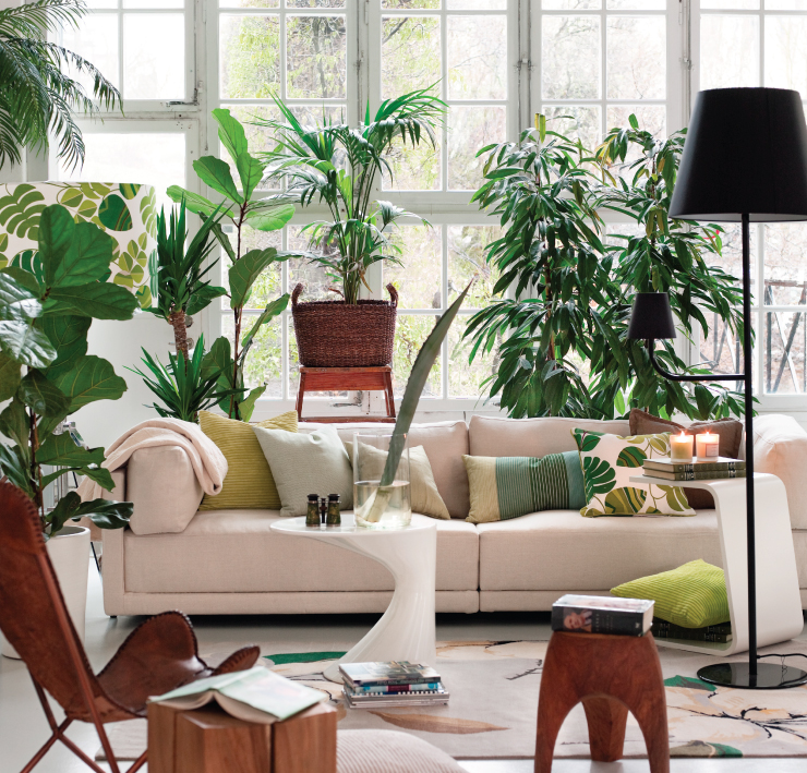 A living room with a lot of green plants.