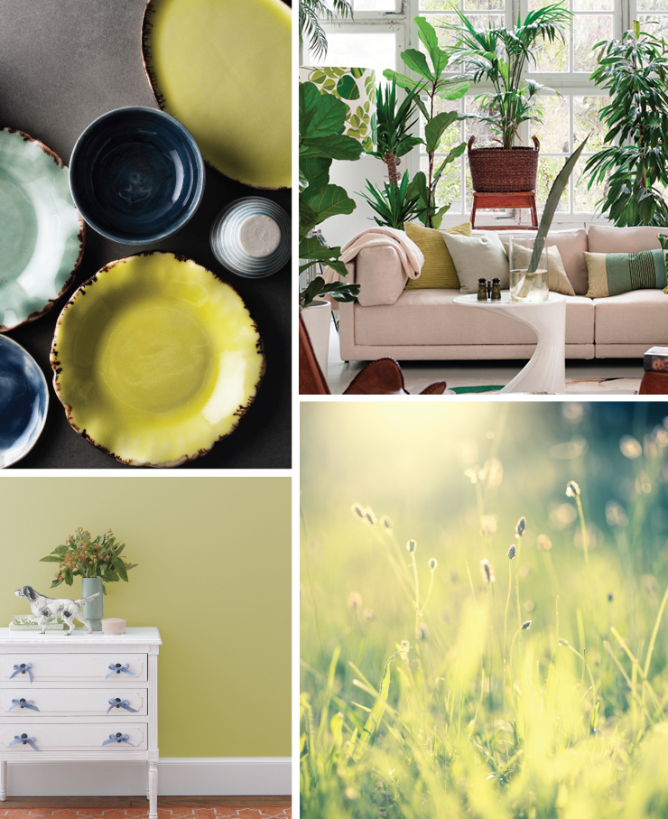 A collage of four images representing the color Spring Grass. Images are as follows: Bright yellow ceramic plate. A living room with a lot of green plants. A dresser sitting in front of a wall painted in Spring Grass. A sunlit grassy field.