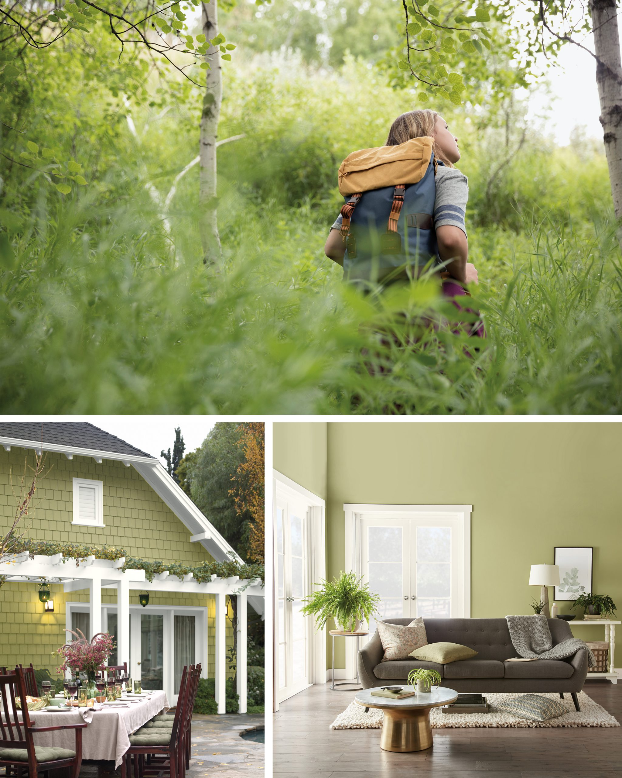 Behr 2020 Color Of The Year Back To Nature Colorfully Behr