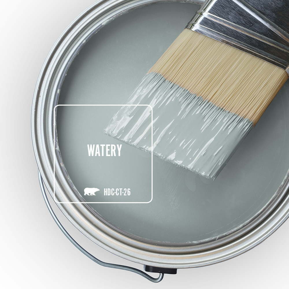 A photo of a paint filled with Watery can and paint brush half dipped in the paint of Watery.