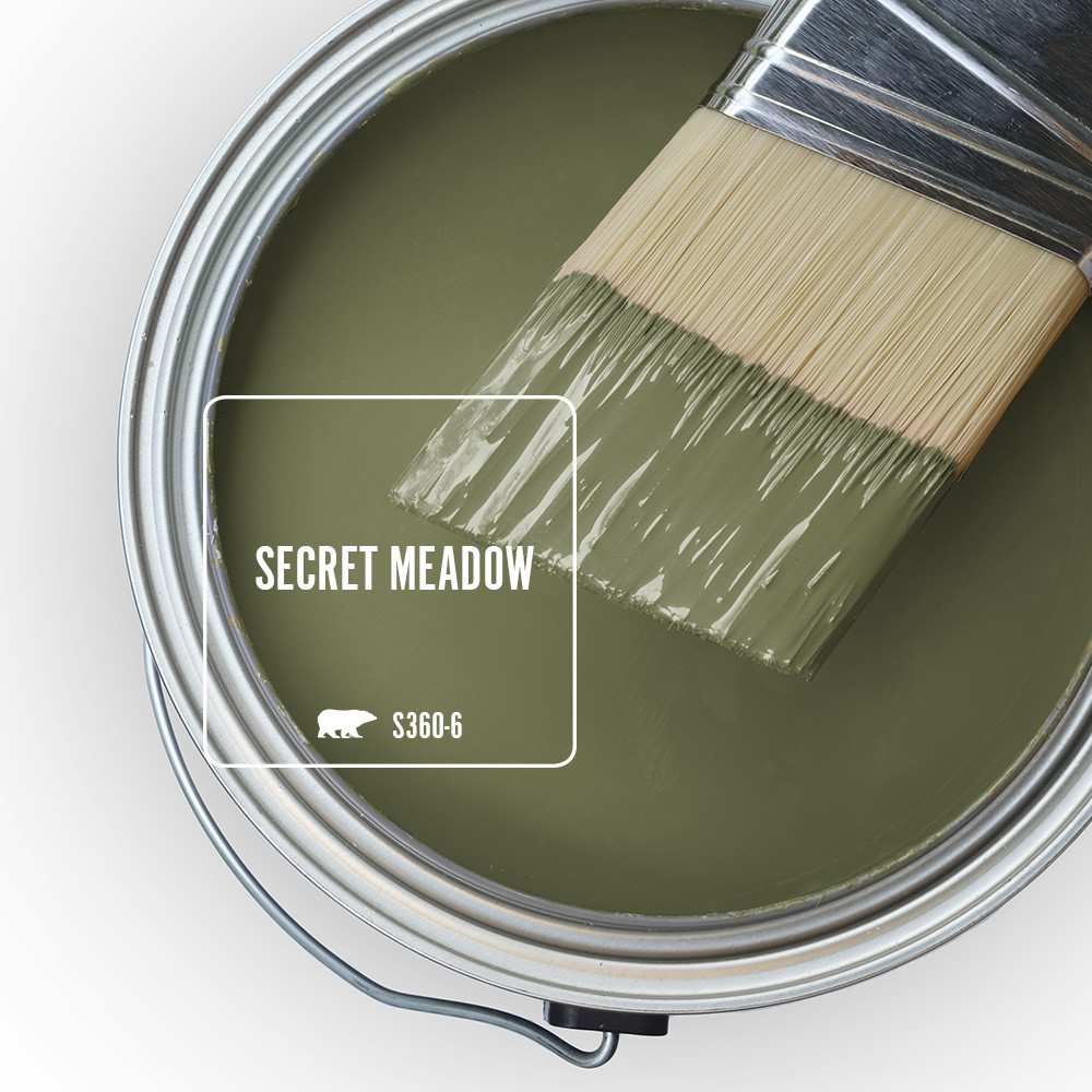 A top overview of an open paint can, the color is a dark green called Secret Meadow.