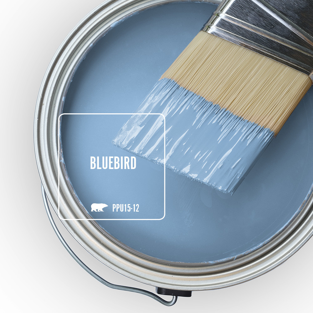 Top view of an open paint can tinted to blue color called Bluebird.