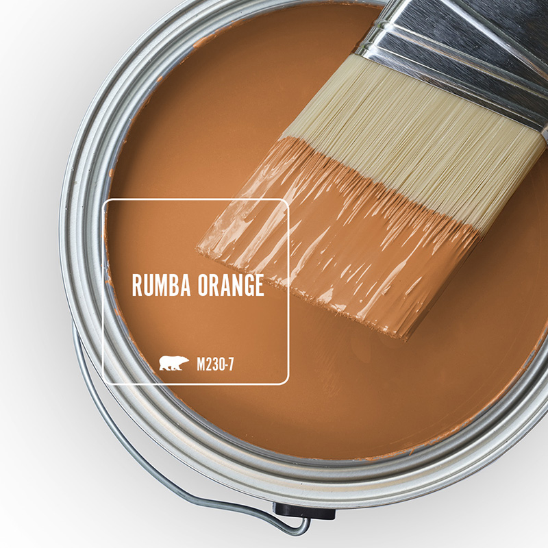 The top view of an open paint can and brush, featured color is Rumba Orange.