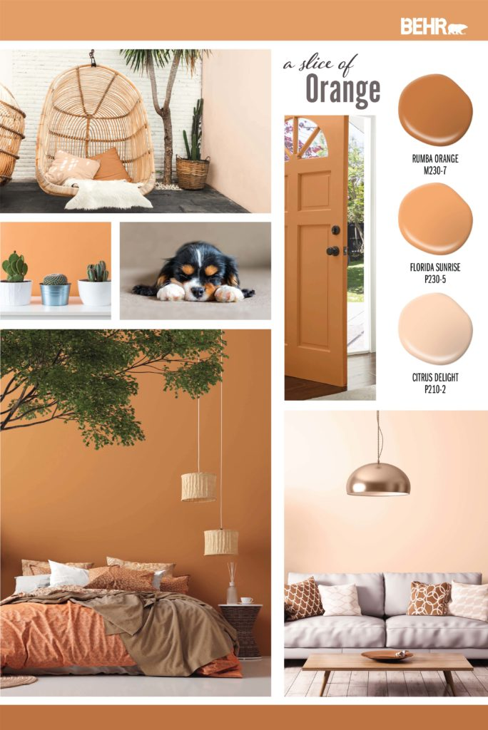 An Inspiration board featuring different orange hues: Rumba Orange M230-7, Florida Sunrise P230-5, Citrus Delight P210-2. Images are of the follow: Outside area with a wicker swing and side wall is painted a light orange color. A front door painted in a dark orange hue. A wall painted in a bright orange with three cactus plants sitting in front of the wall. A dog siting on the floor relaxed. A bedroom with a dark orange painted wall. In the room you see tree branches with green leaves, hanging lights and a rattan side table. The bedding is decorated with blankets that are different shades of orange and browns. A living room with brown and cream pillows. A copper colored light hangs above the couch.
