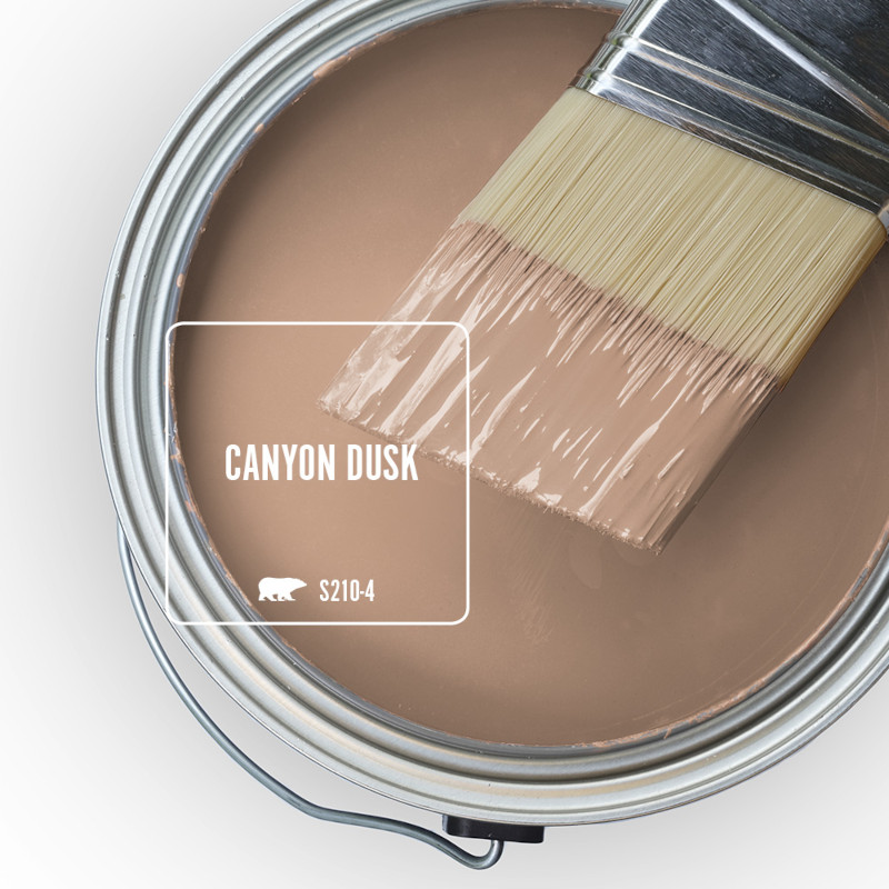 The top view of an open paint can featuring a neutral color called Canyon Dusk.