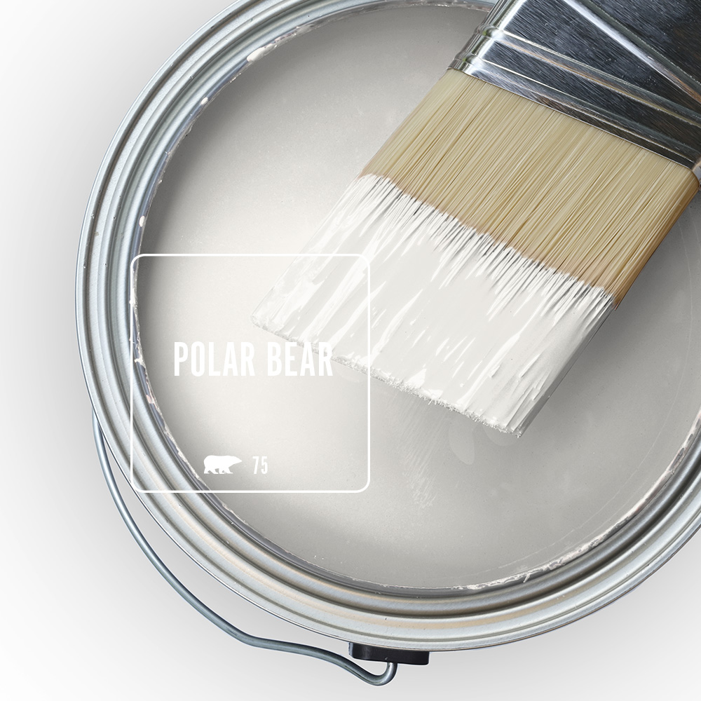 A paint swatch of the white color Polar Bear.