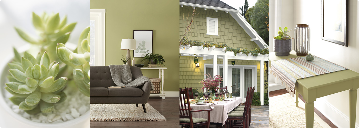 Color Trends 2020 Of The Year And Palettes Behr Paint
