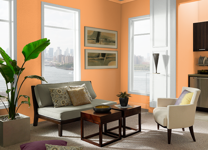 Bergamot Orange P220-6 | Behr Paint Colors