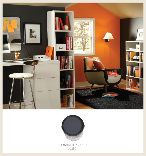 Colorfully, BEHR :: 2011 Trend Focus: Gray